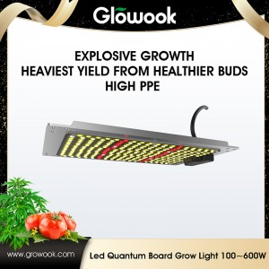 LED Quantum board 100W-600W