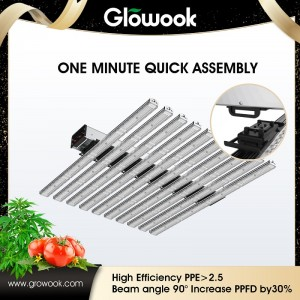 LED GROWPOWER 640W / rakibo Quick