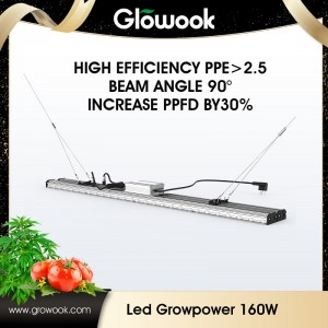 LED Growpower 160w