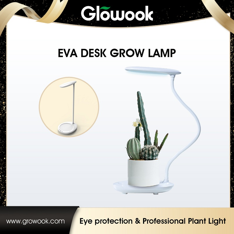 EVA desk grow light Featured Image