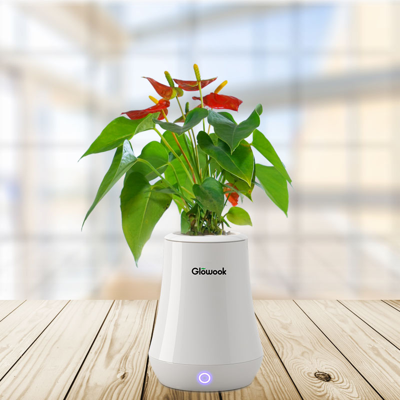 Quality Inspection for Indoor Gardening Kit -