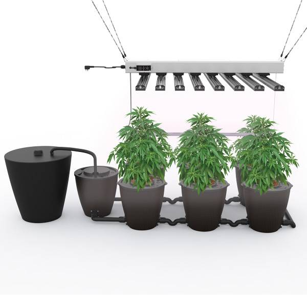 Newly ArrivalGrowth Plant Lamp Strip Tube -