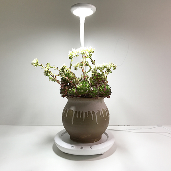Free sample for Garden Head Planter -