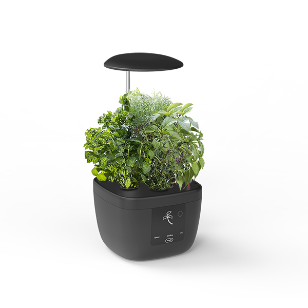 High reputation Indoor Herb Garden -