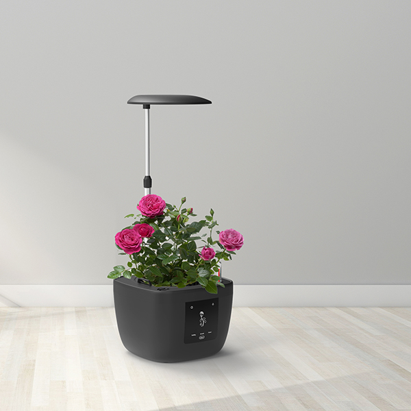 Hot Selling for Indoor Gardening System -