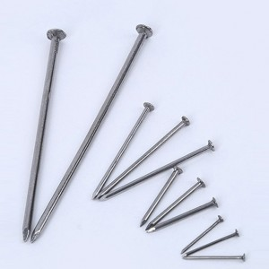 Common Galvanized Iron Polished Nail