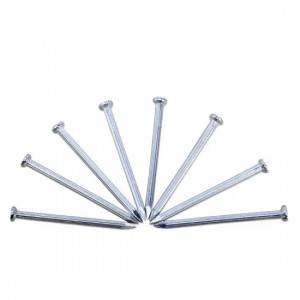 Factory direct sale competitive price galvanized steel concrete nails