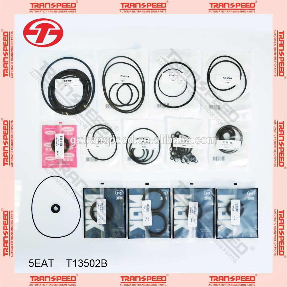 guangzhou transpeed 5EAT T13502B Automatic Transmission Overhaul kit