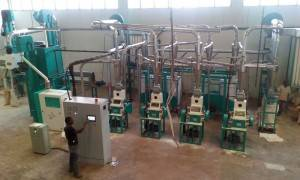 20t/24h Maize Flour Milling Machine