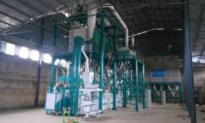 China wholesale Wheat Processing Line -