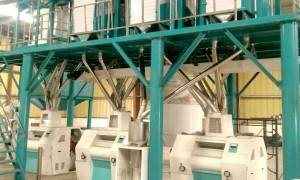 Factory Promotional Maize Corn Flour Mill Plant -
