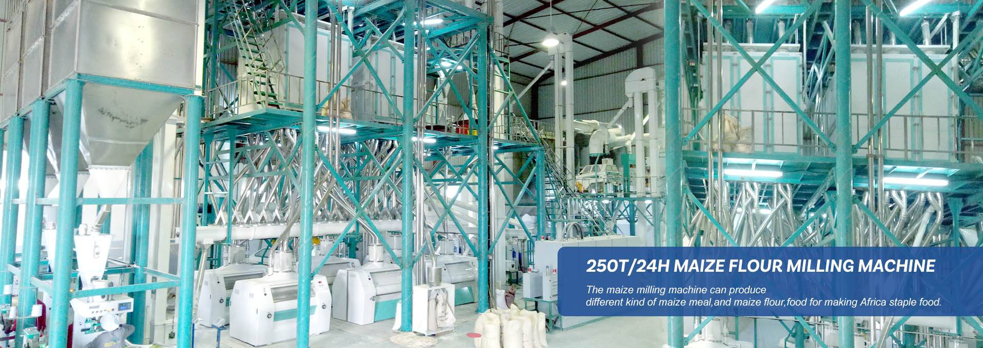 250T/24H MAIZE FLOUR MILLING MACHINE