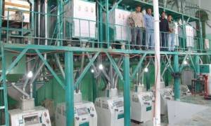 60t / 24h Wheat Mine Milling Machine
