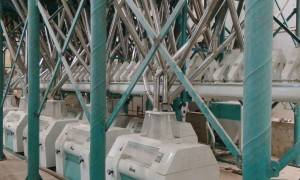 200t/24h Wheat  Flour Milling Machine