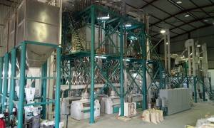 250t / 24h Maize Mine Milling Machine