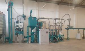 10t/24h Maize Flour Milling Machine