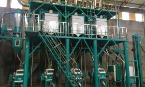 40t / 24h Wheat Mine Milling Machine