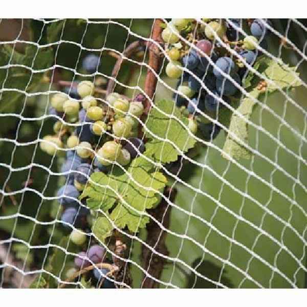 High Quality Hot-Dipped Galvanized Wire -
