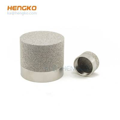 Factory Cheap Hot Methane Gas Detector Sensor - Sintered SS anti-explosion probe sensor gas detector used for protection sensing element – HENGKO