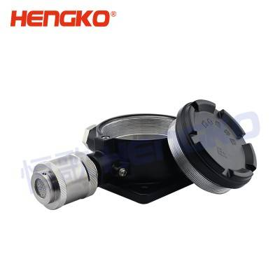Chinese wholesale Portable Gas Leak Detector - Sintered SS 316L stainless steel flame-proof protective probe filter housing industrial co2 semiconductor sensor – HENGKO