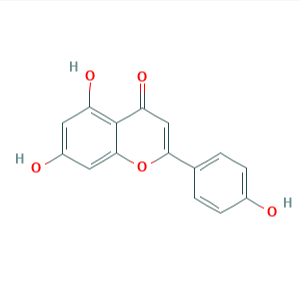Manufacturer of Artemisinin -