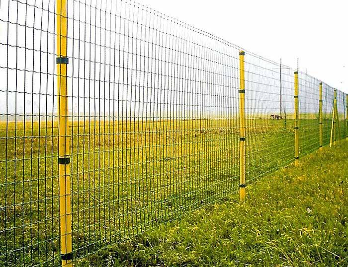 Hot sale Stainless Steel Fence - Euro Fence – Hua Guang