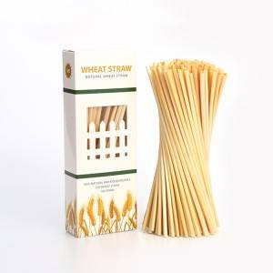 100pcs Natural Plant Wheat Straw Organic Wheat Hay Straw