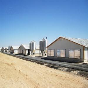 Professional design modular automatic control chicken poultry shed