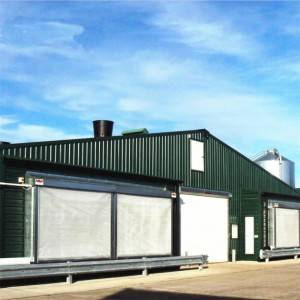 Prefab Steel Structure Broiler Poultry Shed Design