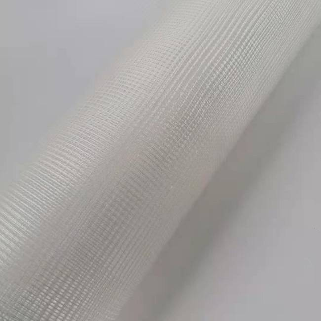 75g 4*4 5*5 C-glass Fiberglass Mesh Export to Iran Market