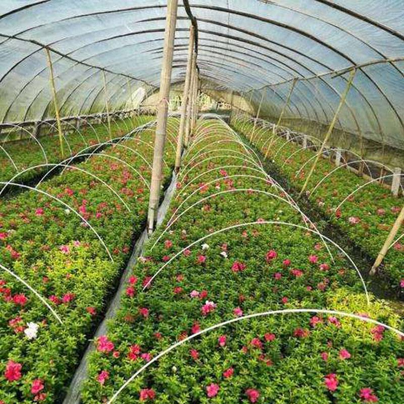 Is the use of glass fiber in greenhouses environmentally friendly?