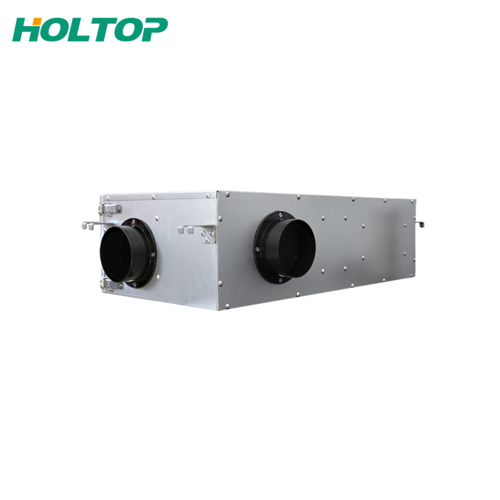 Factory wholesale Whole House Ventilation Fan - By-pass Function Fresh Air Filtration Systems – Holtop detail pictures