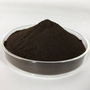 Nano Platinum Powder PTP-P010