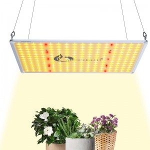 Wholesale Discount Lights To Use For Growing - Plant Grow Light Horticulture Light for Green House – Archibald