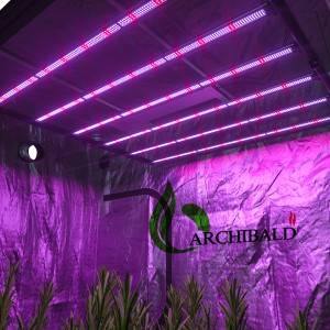 6Bar Fluence Gavita pro 1700e gen2 lm301B Full Spectrum led Grow light led