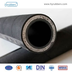 China New Product Steel Wire Braided Ptfe Hose -
