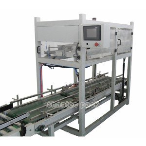 Automatic Top Load Gravity Case Packing Machine