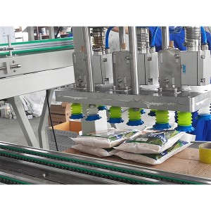 Seeds Case Packing Machine-Thailand Pick and Place Case Packer