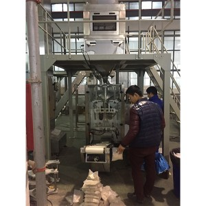 Sugar Vertical Packing Machine-Mauritius PE film Monofilm bag Packing Machine