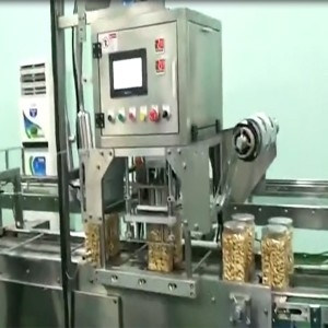 Vietnam project of 1kg cashew nuts bottle packing line with liquid nitrogen filing