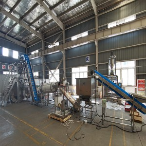 Latvia Project of 30g and 60g Chips Vertical Gusset Pouch Packing Machine and Flavoring Machine