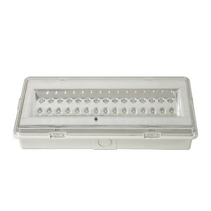 Bulkhead emergency light:LE503L