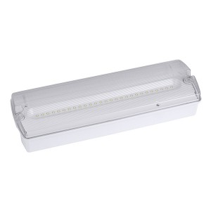Bulkhead emergency light:AD500
