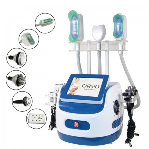5 in 1 Cryolipolysis Slim Instrument with Body Fat Handheld / Freeze Fat Slim Machine