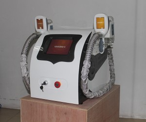 Latest Lipo Cold Fat Freezing Slimming Cryolipolysis Machine