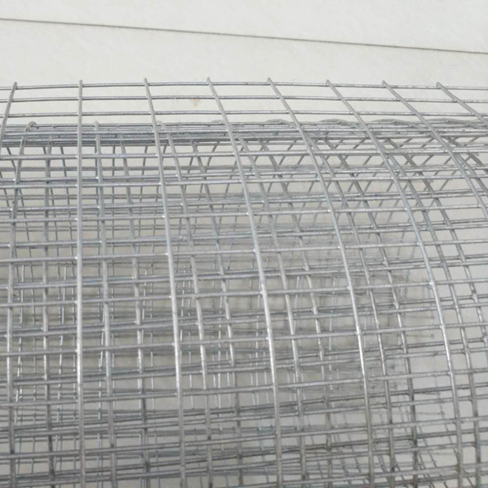 "3/4"" Galvanized Welded Wire Mesh"