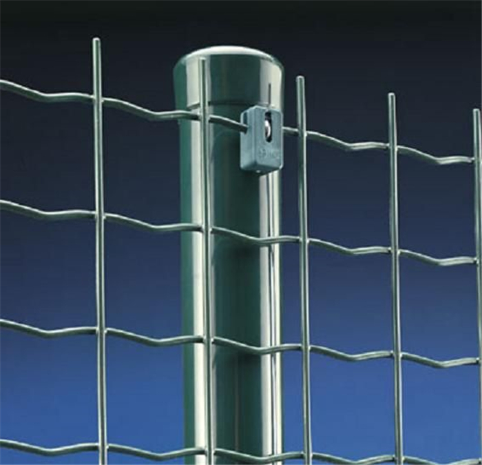 Green Color Security Euro Fence Featured Image