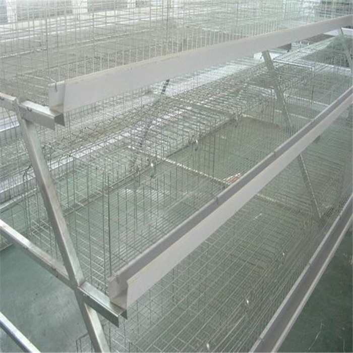 Galvanized Welded Square Mesh Panels For Chicken Cage