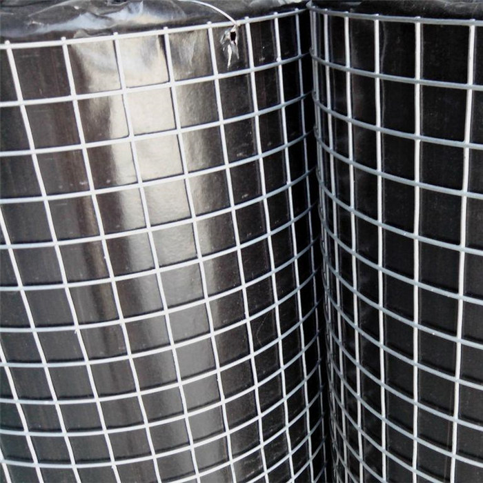 Welded Wire Mesh-Hot-dip Galvanized After Welding