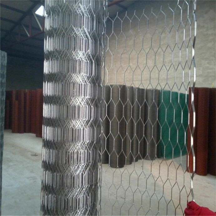 Factory directly supply Common Nail 1/2 -